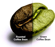 Honest Green Coffee Bean Extracts Review